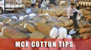 mcx cotton tips