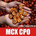 free cpo crude palm oil tips