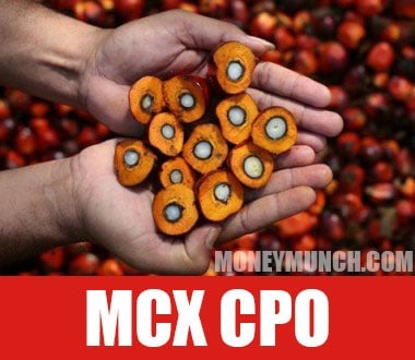 free cpo crude palm oil tips