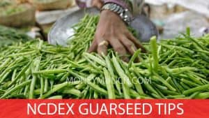NCDEX GuarSeed Intraday tips