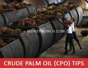 mcx crude palm oil intraday tips