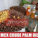 crude palm oil tips