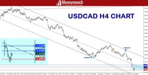 forex usdcad signals forecast